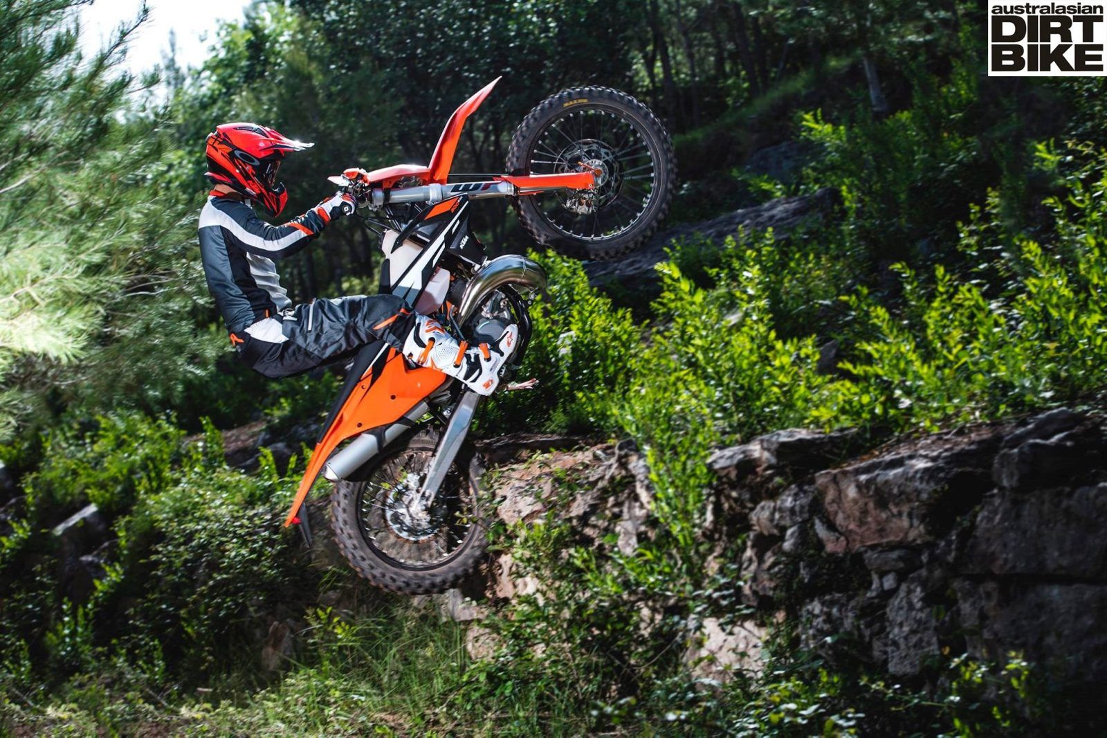 2017 KTM 65 SX - First Look: 2017 KTM 50 SX, 65 SX, and 85 SX - Motocross Pictures - Vital MX